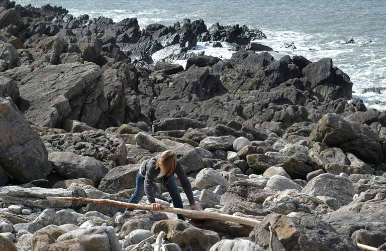Best Beaches For Driftwood In Wales